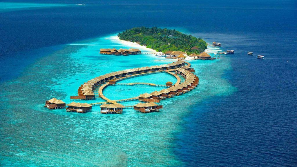 Отели с лучшим домашним рифом на Мальдивах_1