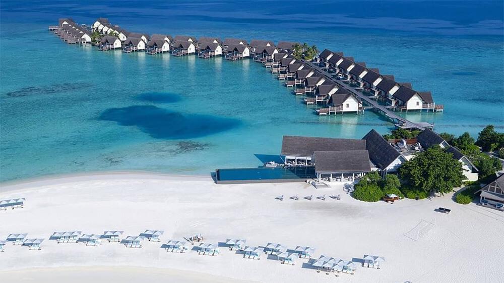 Отели с лучшим домашним рифом на Мальдивах_0