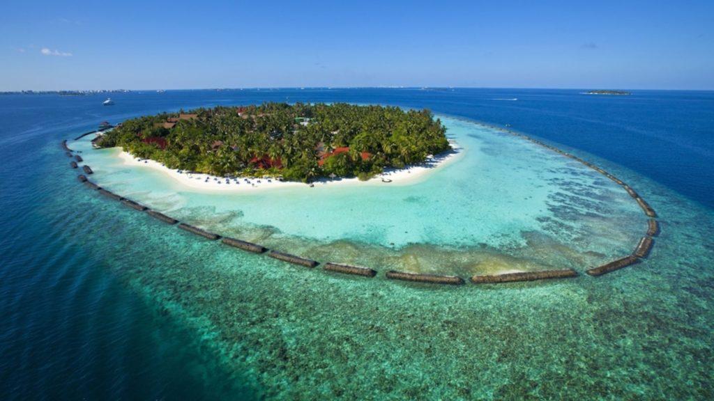 Отели с лучшим домашним рифом на Мальдивах_2